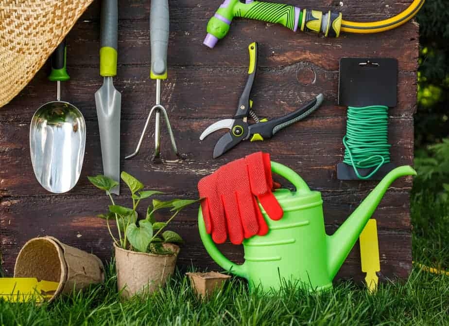 10 Essential Container Gardening Tools - PINCH OF SEEDS