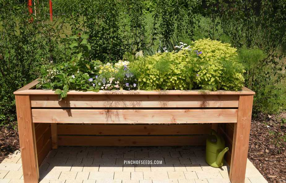 Elevated Garden Beds What You Must, How To Make An Elevated Raised Garden Bed